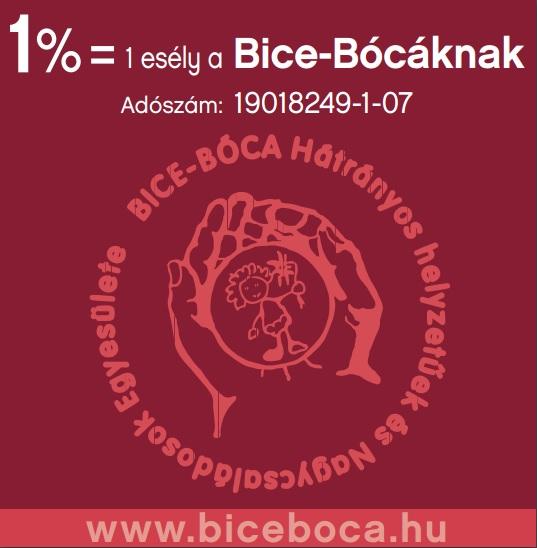bice_boca_1%